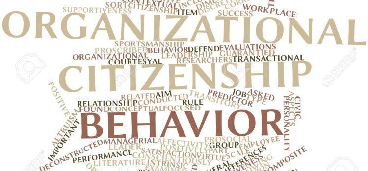 رفتار شهروندی سازمانی- مجموعه ی مقالات انگلیسی ترجمه شده